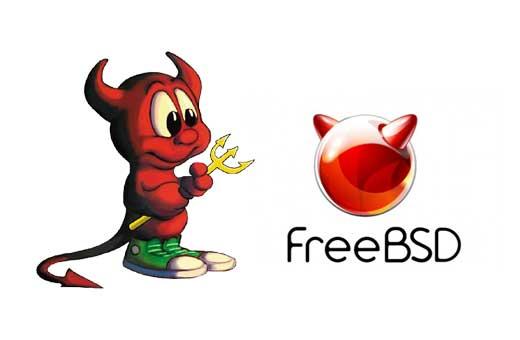 FreeBSD 11.3-BETA2 发布,类 Unix 操作系统-七界传说丨关注分享网络、硬件、维护、游戏、主题、虚拟化、软件分享!